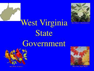 West Virginia State Government