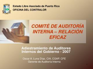 Adiestramiento de Auditores Internos del Gobierno - 2007