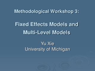 Methodological Workshop 3: Fixed Effects Models and Multi-Level Models
