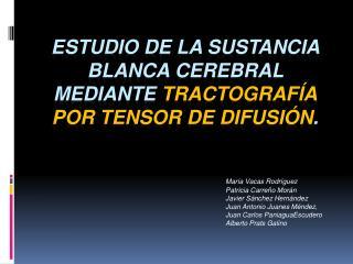 Estudio de la sustancia blanca cerebral mediante  tractografía por tensor de difusión .