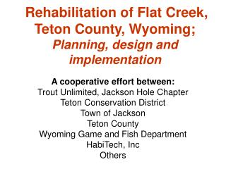 Rehabilitation of Flat Creek, Teton County, Wyoming; Planning, design and implementation