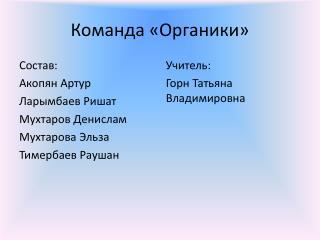Команда «Органики»