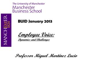BUID January 2013 Employee Voice:   Dynamics and Challenges