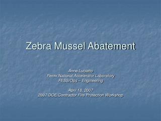 Zebra Mussel Abatement