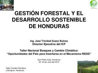 GESTIÓN FORESTAL Y EL DESARROLLO SOSTENIBLE DE HONDURAS