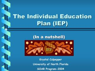 The Individual Education Plan (IEP)