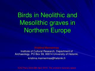 Birds in Neolithic and Mesolithic graves in Northern Europe