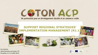 SUPPORT REGIONAL STRATEGIES' IMPLEMENTATION MANAGEMENT (R1.1)