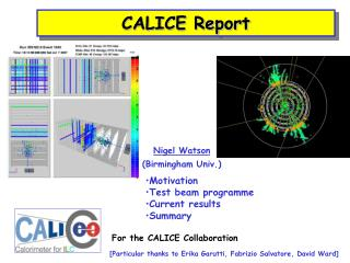 CALICE Report