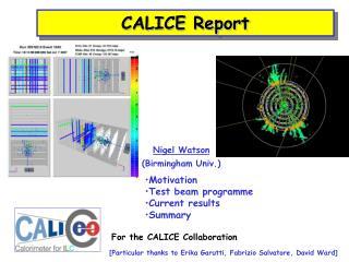 CALICE Report