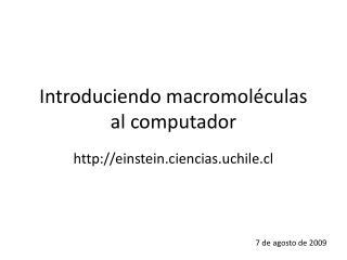 Introduciendo macromoléculas al computador