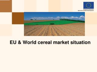 EU  & World cereal market situation