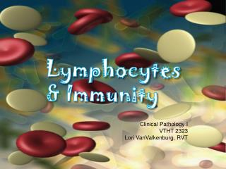 Lymphocytes & Immunity Clinical Pathology I VTHT 2323 Lori  VanValkenburg , RVT