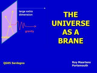 THE UNIVERSE  AS A  BRANE