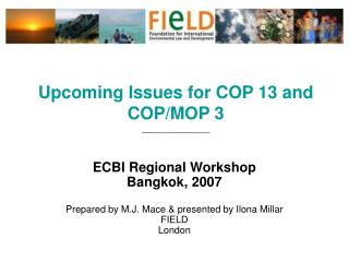 Upcoming Issues for COP 13 and COP/MOP 3 ______________