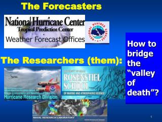 The  Forecasters The Researchers (them):