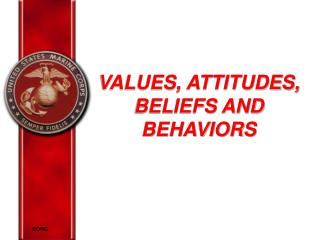 VALUES, ATTITUDES, BELIEFS AND BEHAVIORS