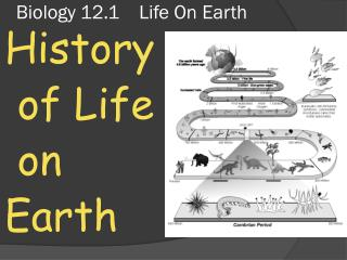 Biology 12.1    Life On Earth