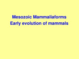 Mesozoic Mammaliaforms Early evolution of mammals
