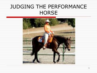 JUDGING THE PERFORMANCE HORSE