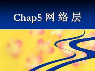 Chap5  网 络 层