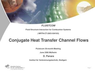 FLUISTCOM   Fluid Structure Interaction for Combustion Systems   MRTN-CT-2003-504183   Conjugate Heat Transfer Channel F