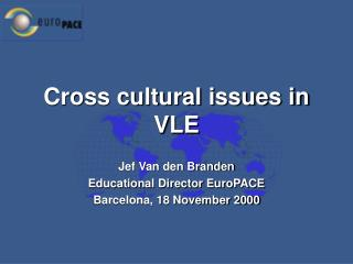 Cross cultural issues in VLE