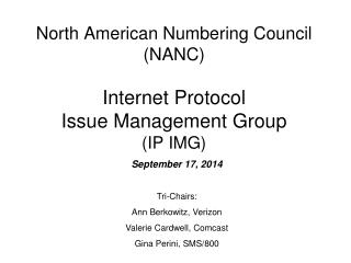 North American Numbering Council (NANC) Internet Protocol Issue Management Group (IP IMG)