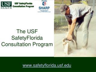 The USF SafetyFlorida Consultation Program
