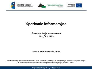 Spotkanie informacyjne Dokumentacja konkursowa Nr  1/9.1.1/13