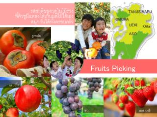 Fruits Picking