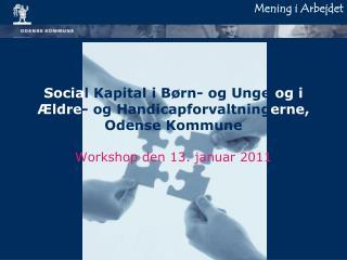 Socia l Kapital i Børn- og Unge  og i Ældre - og Handicapforvaltning erne,  Odense Kommune