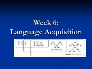 Week 6: Language Acquisition