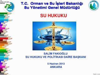 SALİM FAKIOĞLU  SU HUKUKU VE POLİTİKASI DAİRE BAŞKANI 5 Haziran 2013  ANKARA