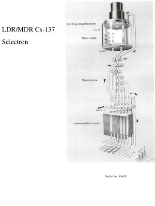 LDR/MDR Cs-137 Selectron