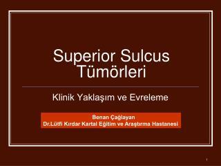 Superior Sulcus Tümörleri