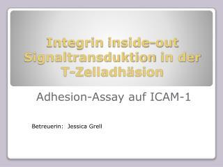 Integrin inside -out  Signaltransduktion  in der T-Zelladhäsion
