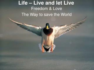 Life � Live and let Live