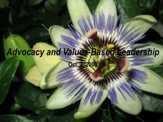 Advocacy and Values-Based Leadership Oct. 2, 2006
