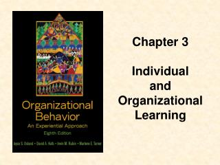 Chapter 3 Individual  and Organizational Learning