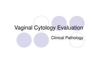 Vaginal Cytology Evaluation