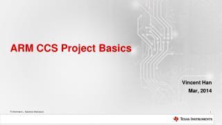 ARM CCS Project Basics
