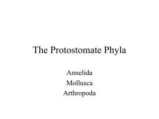 The Protostomate Phyla