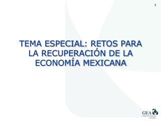 TEMA ESPECIAL : RETOS PARA LA RECUPERACIÓN DE LA ECONOMÍA MEXICANA