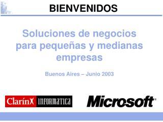 Soluciones de negocios para pequeñas y medianas empresas Buenos Aires – Junio 2003