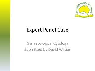 Expert Panel Case