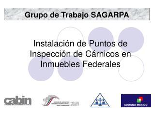 Grupo de Trabajo SAGARPA