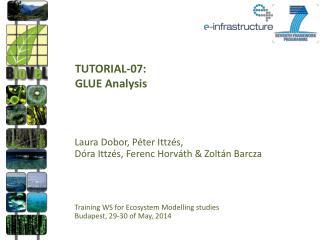 TUTORIAL-07: GLUE Analysis