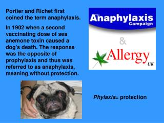 Portier and Richet first coined the term anaphylaxis.  In 1902 when a second vaccinating dose of sea anemone toxin cause