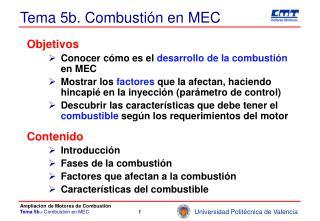 Tema 5b. Combustión en MEC